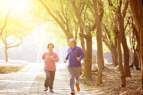 senior citizen recreation benefits singapore
