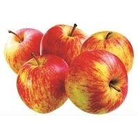 France Royal Gala Apples
