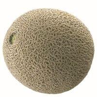 Honduras Rock Melon