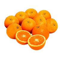 Egypt Navel Oranges